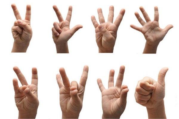«Русский жестовый язык»